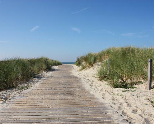 Strandweg in den Dünen © Janina Voskuhl