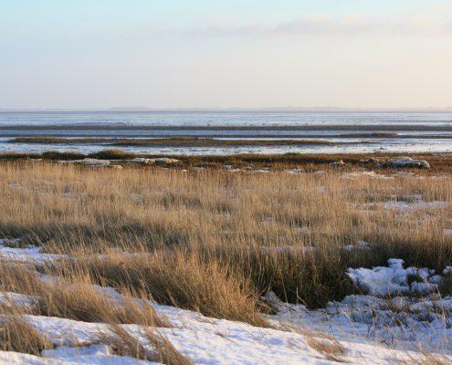 Winterbild © Janina Voskuhl